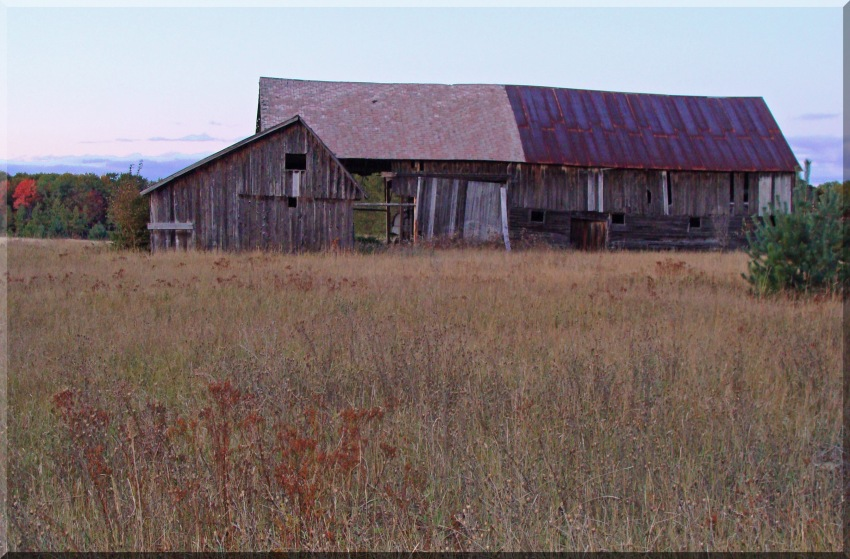 Belinski Farm