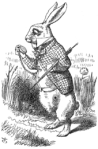 White Rabbit, Wikipedia