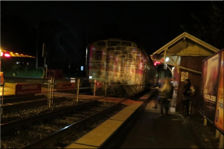 Shakey Train