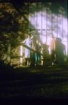 Tyler Arboretum Barn1956